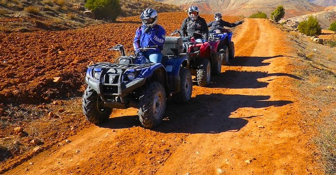 Full Day Quad Biking Palm Grove